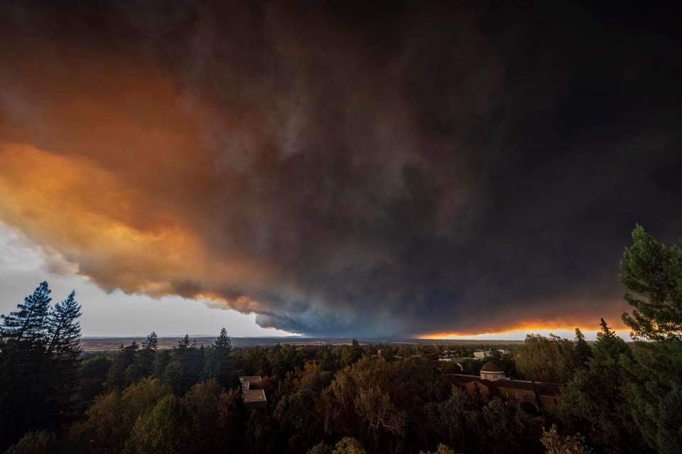 Alive in the Fire_Butte Fires (1).jpg