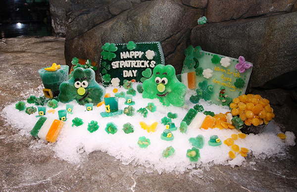 Sea Otters Get into the St. Patrick's Day Spirit 4