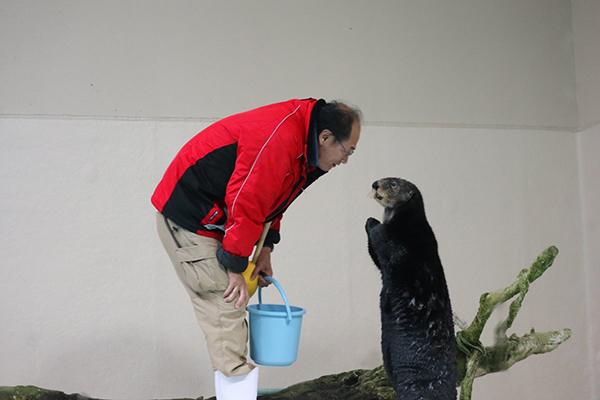 Human Listens to What Sea Otter Has to Say
