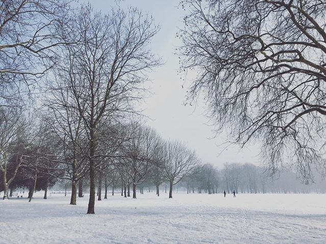 Victoria Park this afternoon. #victoriapark #snow #hackney #beastfromtheeast #❄️ #london #brrr