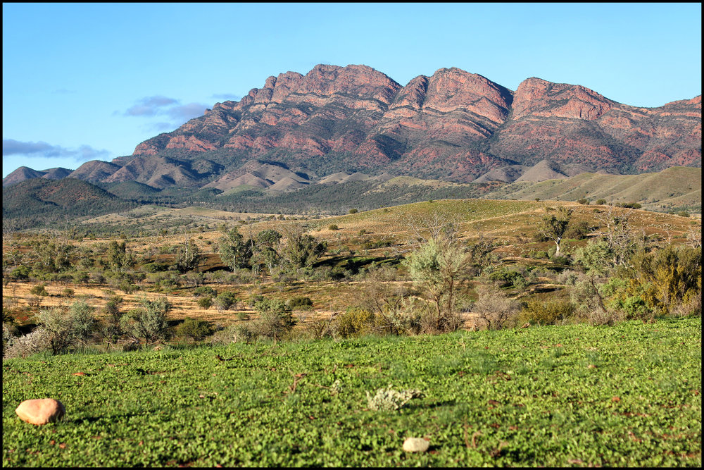 Wilpena Pound - South Australia