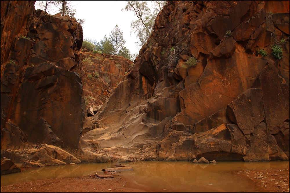 Sacred Canyon - Flinder Rangers