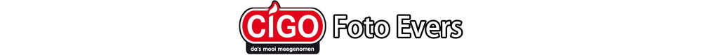 CIGO FE logo.jpg