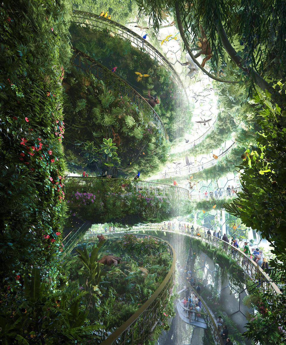 Zas_Iran-rainforest_Tropical Levels-option-low.jpg
