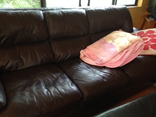 This is the nicer sofa. The other, I'm too embarrassed to show you!