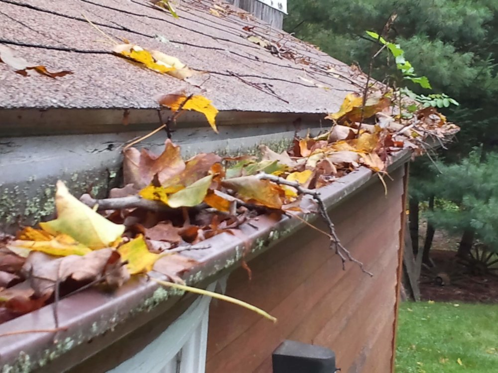 WHY YOU NEED GUTTERS - KEEP OUT PESTSClogged up gutters can be appealing to a number of critters as a nesting site. From birds to mosquitoes, a bed of damp leaves can be alluring. We come across ant beds more than anything.DAMAGE TO FASCIAThe fascia is the board that runs right behind your gutters. Overflowing water can damage this important component of your gutter system.OVER-WATERING GARDEN BEDSIf your gutters become clogged to the point that water is spilling over the side and into your garden beds, this can damage your plants' health by flooding them. Over-watering can be as harmful as not watering enough.CRACKS IN FOUNDATIONIf water overflows and pools along your home's foundation, it can cause major issues and costly repairs over time.DAMAGE TO BRACKETSClogged gutters hold too much weight, which can result in damage to the brackets.