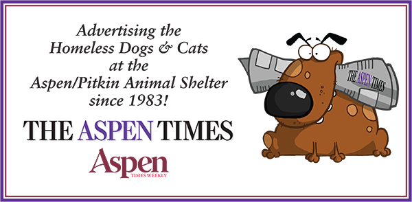 Large Aspen Times Sign for DDA Banner copy.png