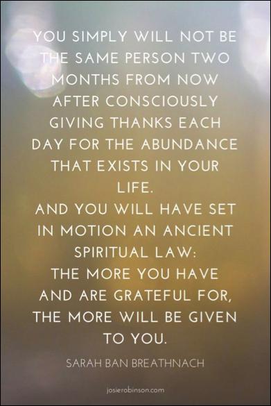 gratitude project.png