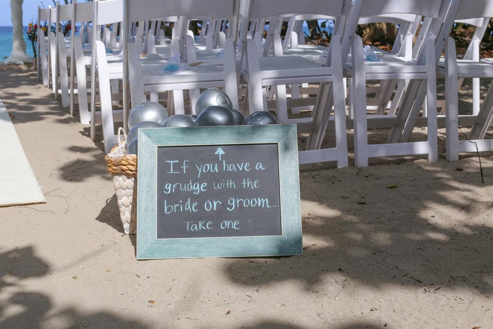 Robbins Wedding 8.6.2014-2.jpg