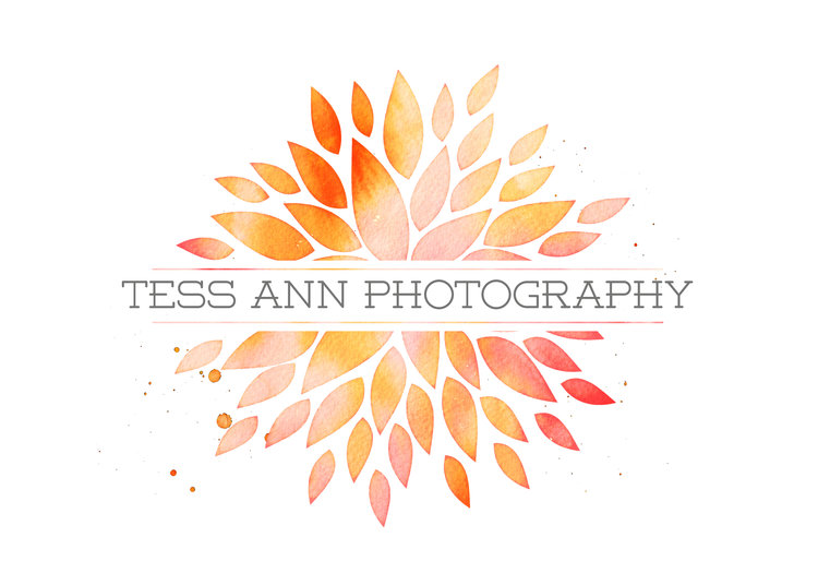 TESS ANN PHOTOGRAPHY
