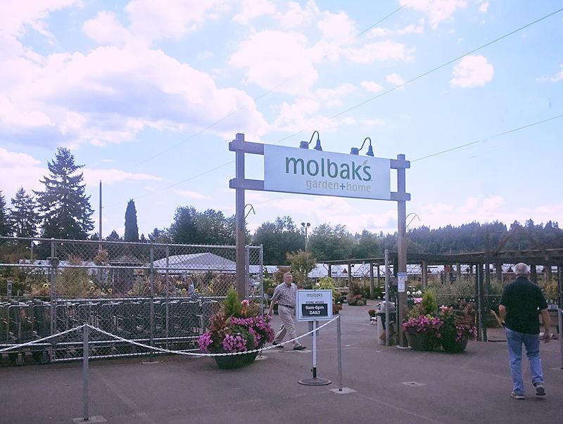 molbaks.jpg