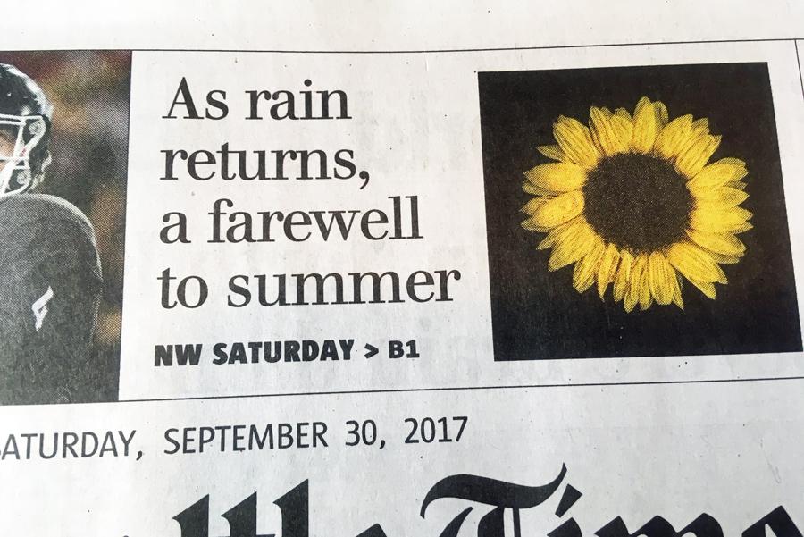 as-rain-returns.jpg
