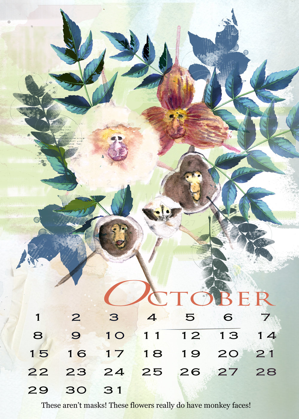 The 2017 Flowers in Wonderland calendar featured real flowers that only look like they might have been  created in the mind of Lewis Carroll. But, like many orchids, these orchids indeed have a strange countenance.