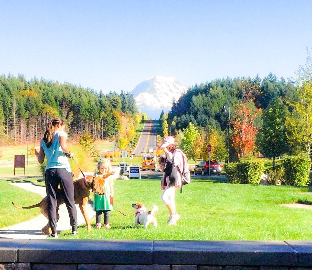 Big pooch, little pooch, big kid, little kid. Big mountain.