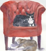 02red-chair-cats.jpg
