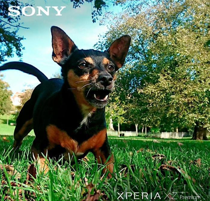 Daisy's first foray into professional modelling now gracing the pages Sony Xperia Chile!
