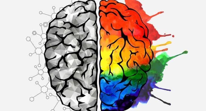 Nell'emisfero destro avvengono i processi creativi
