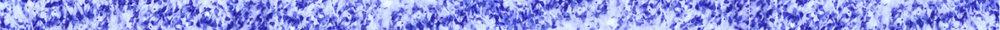 border-neuron.jpg