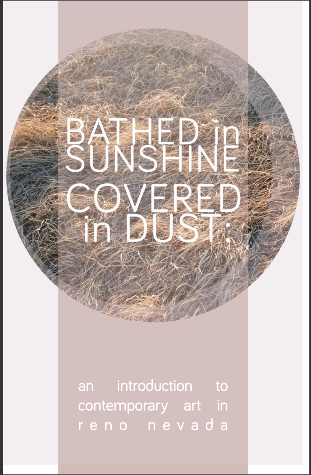 Bathed in Sunshine, Covered in Dust - February 2014 A catalog from a curated exhibition at the Holland Project of contemporary Nevada art. My collaborative project with Jared Stanley, Lake Lahontan's Maritime Legacy was featured.