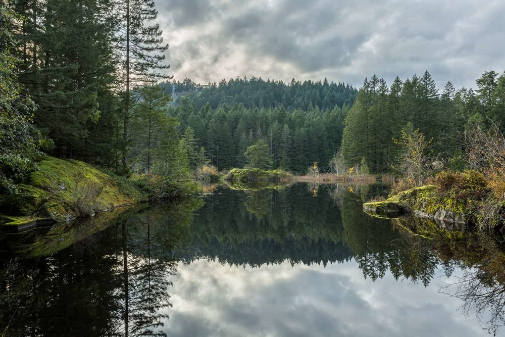 Mary Lake Nature Sanctuary, Langford BC