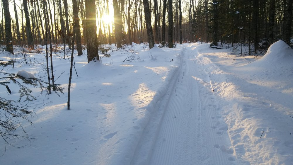 View from a fat bike on Enterprise Recreation Trail south of Rhinelander. Click photo for link to trail map. photo / Blake Carlson