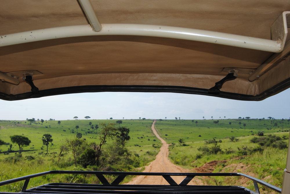 Views from our epic safari van
