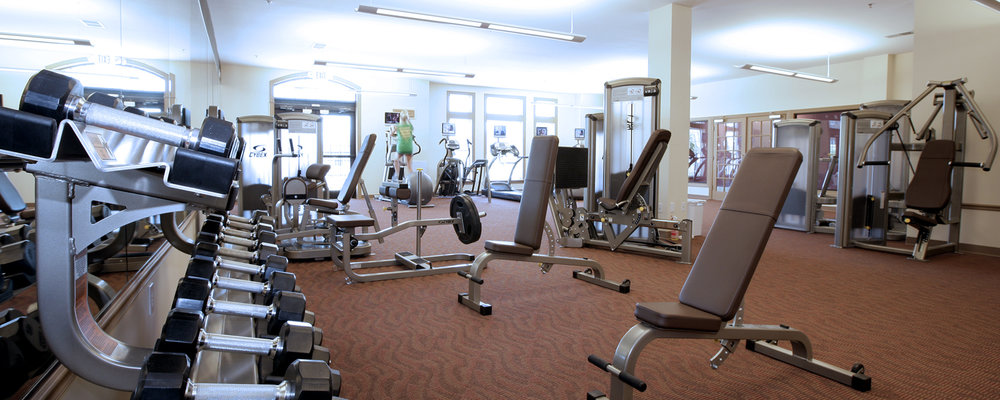 Hamburg Farms Apartments Professional Fitness Center