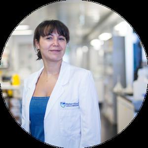 Dr Najoua Laloui