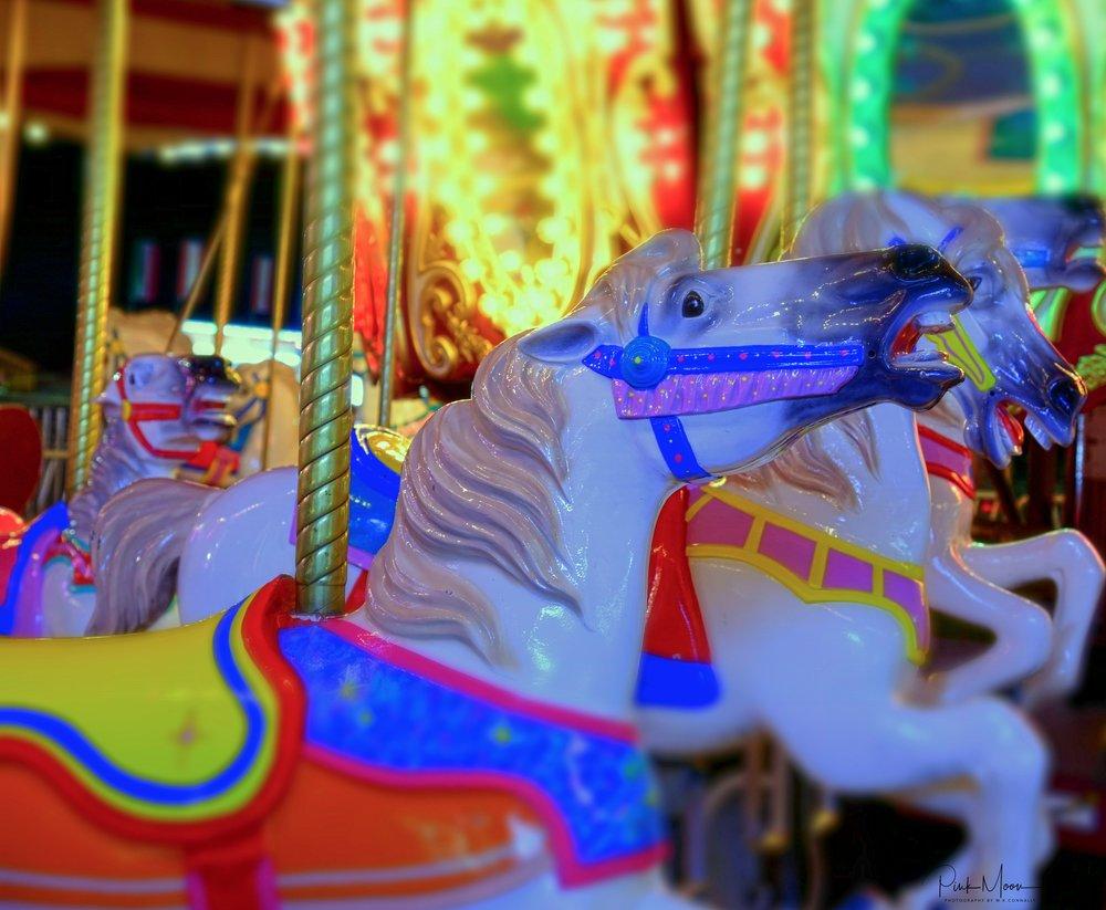 Carnival2-1499225268253.jpg