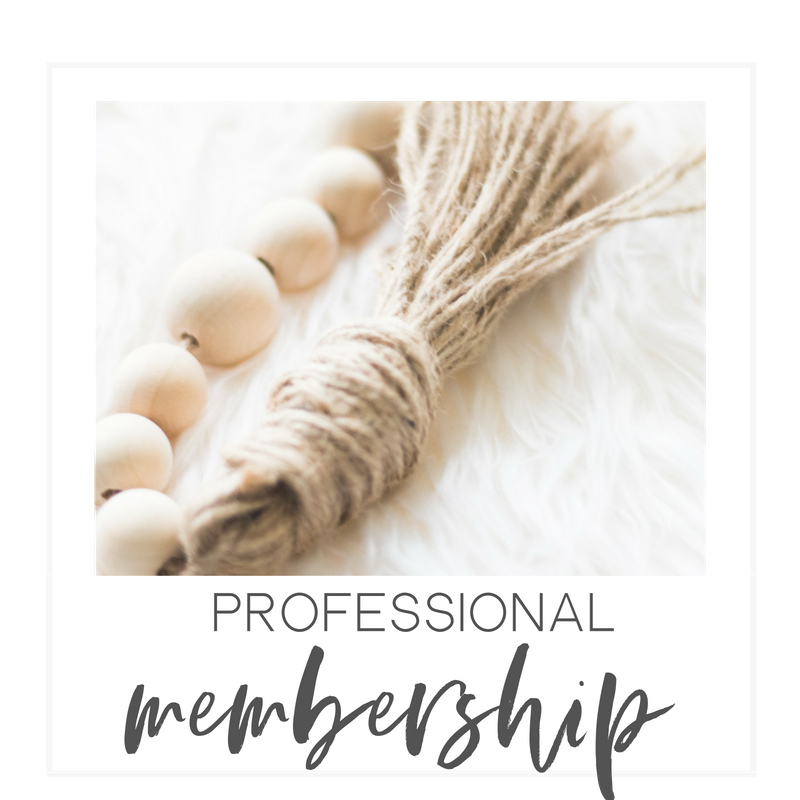 Professional Membership |$350 Annually -