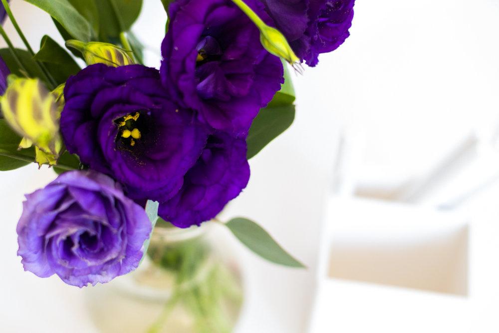 PBD-Purple-Lizzie-1.jpg