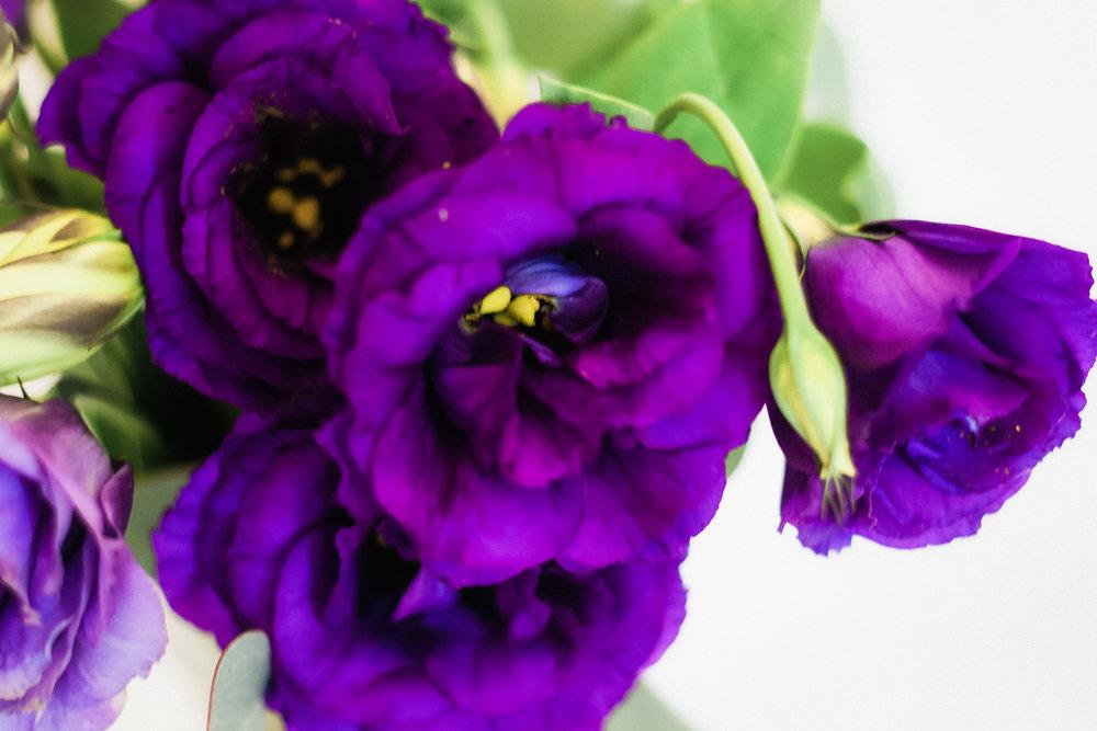 PBD-Purple-Lizzie-11.jpg