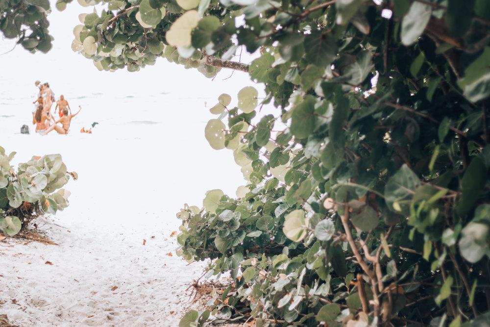 Florida-10.jpg