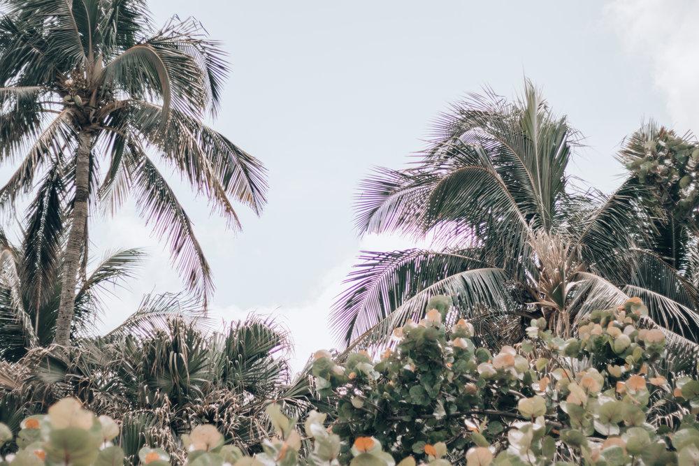 Florida-17.jpg