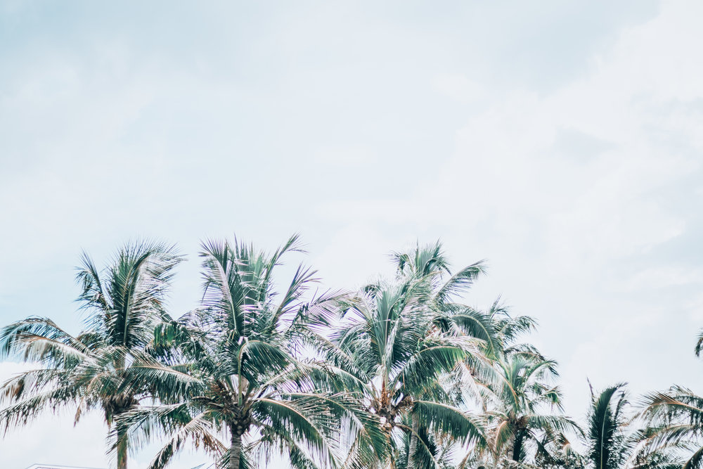 Florida-359.jpg