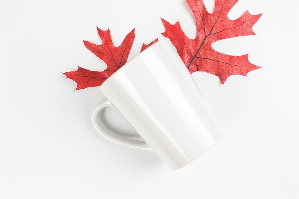 PBD Fall Mug Mock-3.jpg