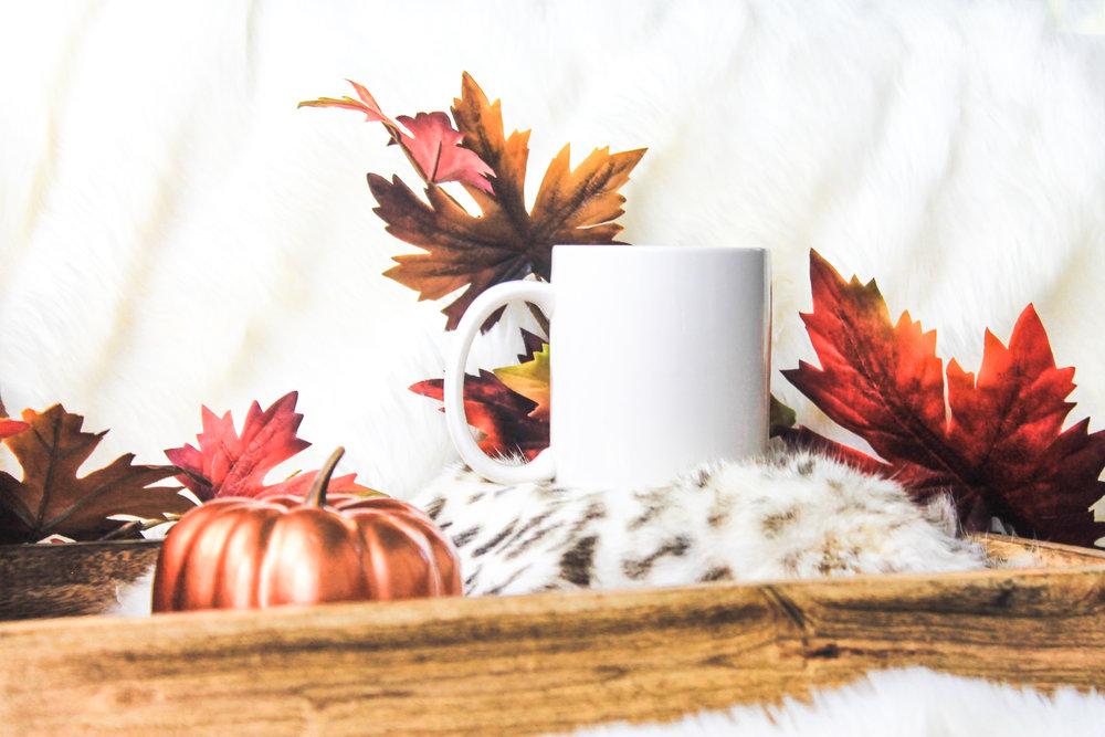 PBD Fall Mug Mock 2-5.jpg