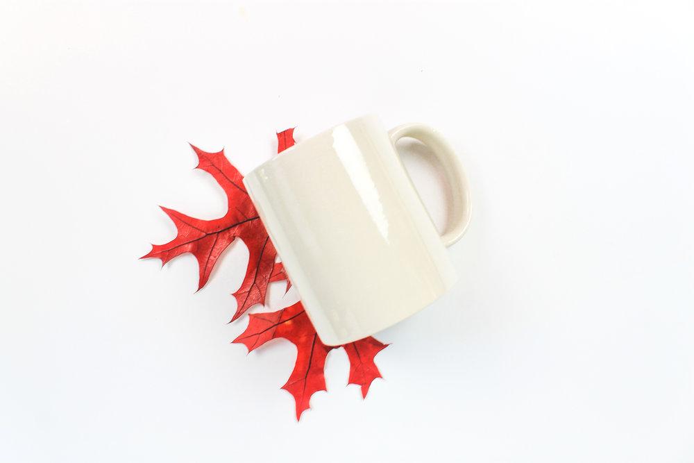 PBD Fall Mug Mock 2-12.jpg