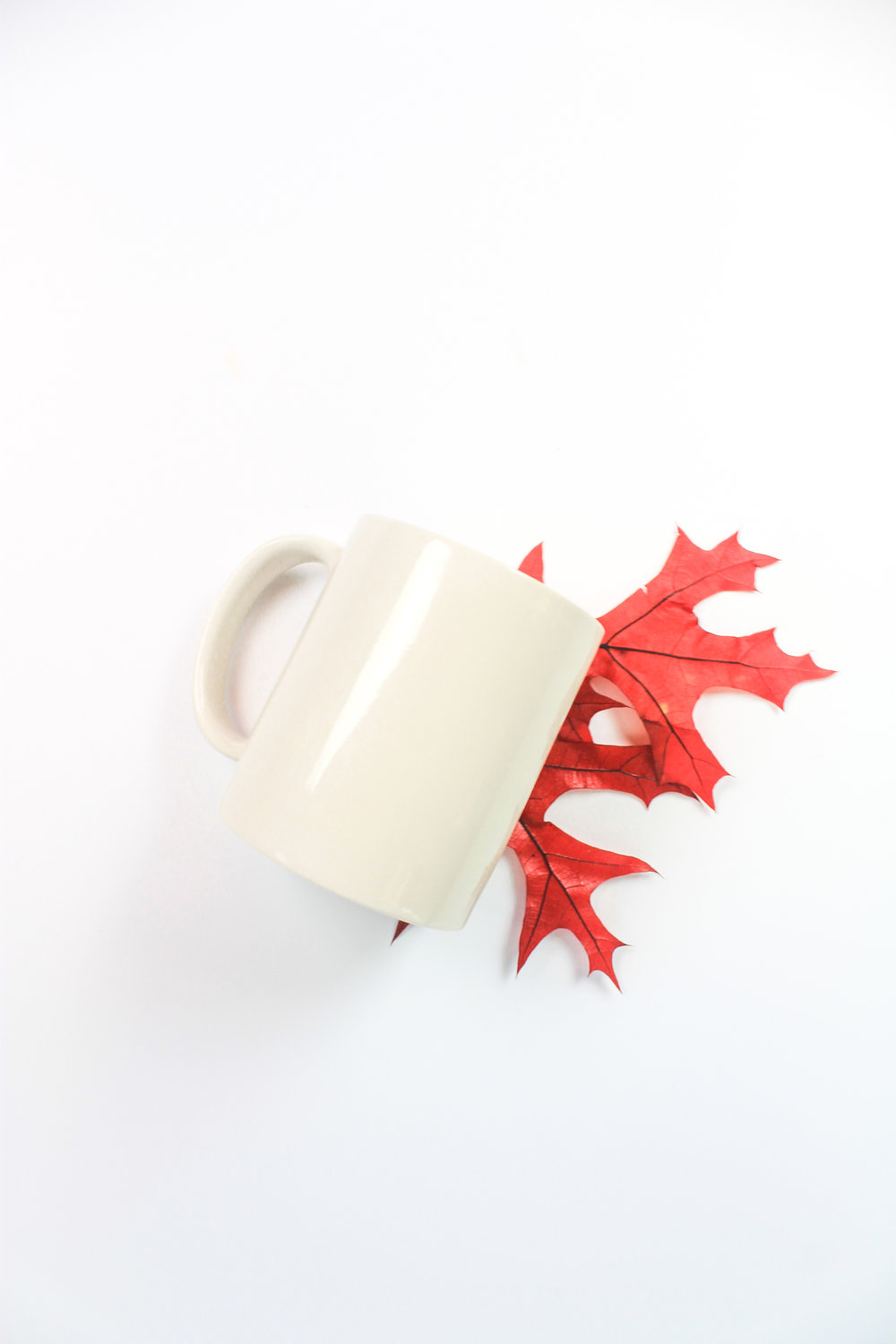 PBD Fall Mug Mock 2-11.jpg