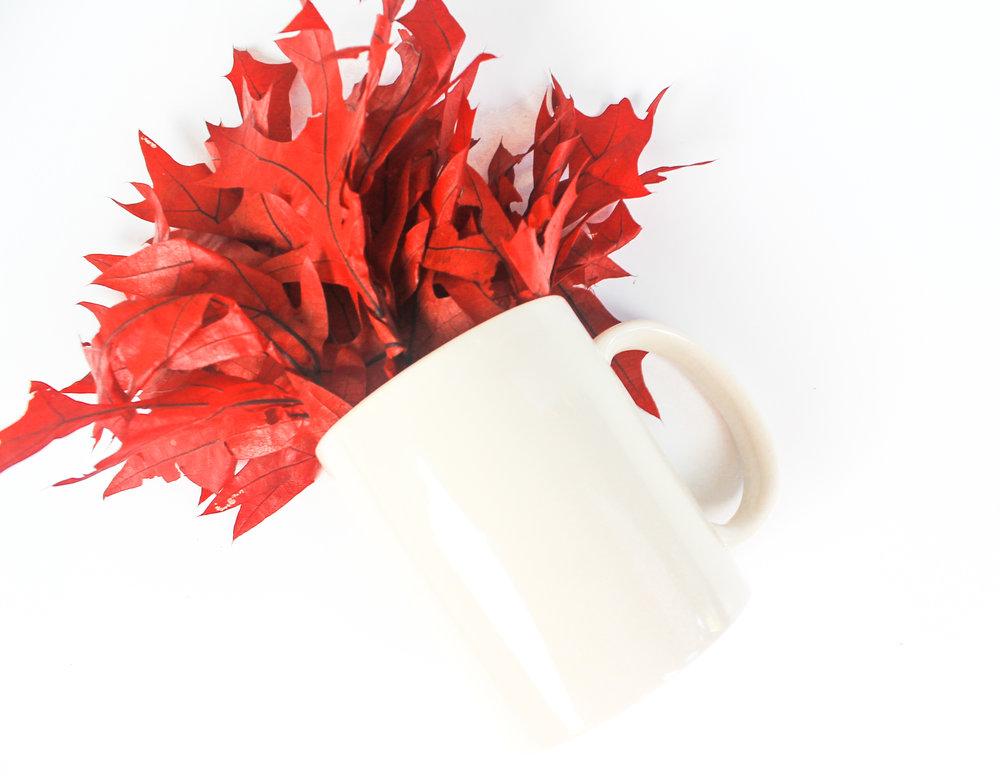 PBD Fall Mug Mock 2-22.jpg