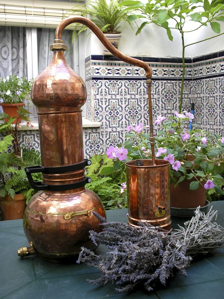 essential oil distillation.jpg