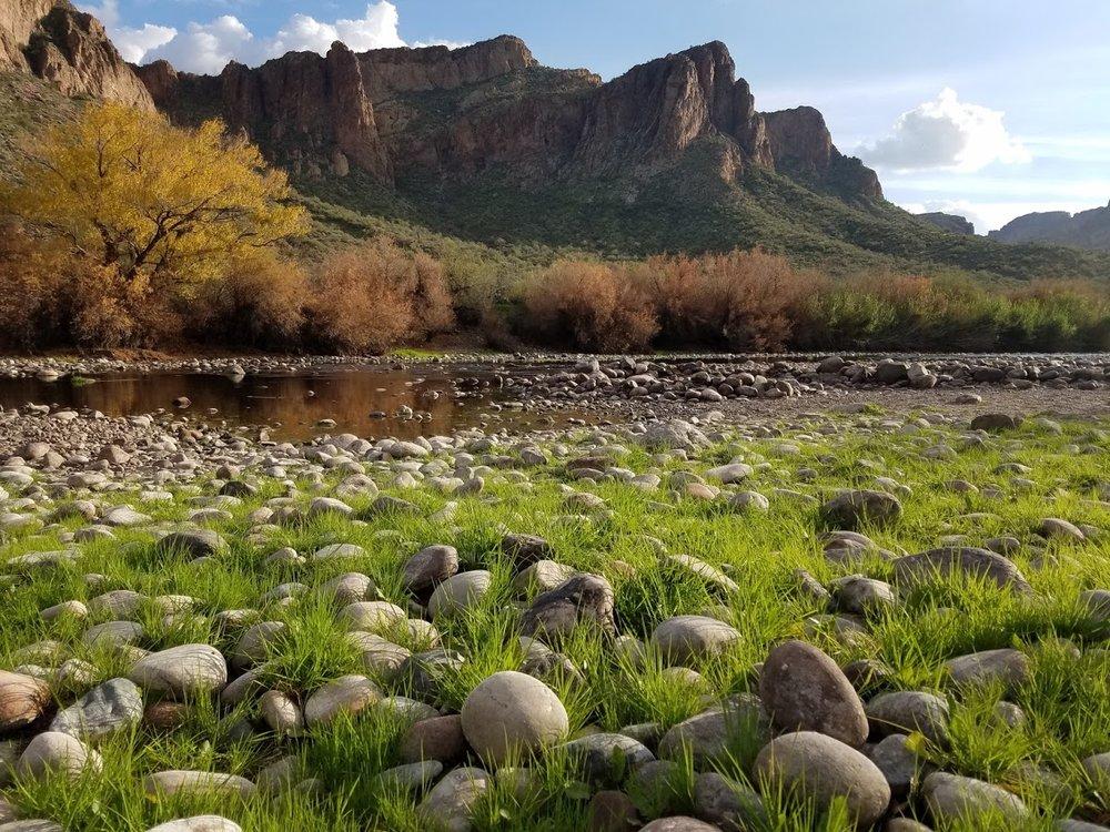 Salt River, AZ