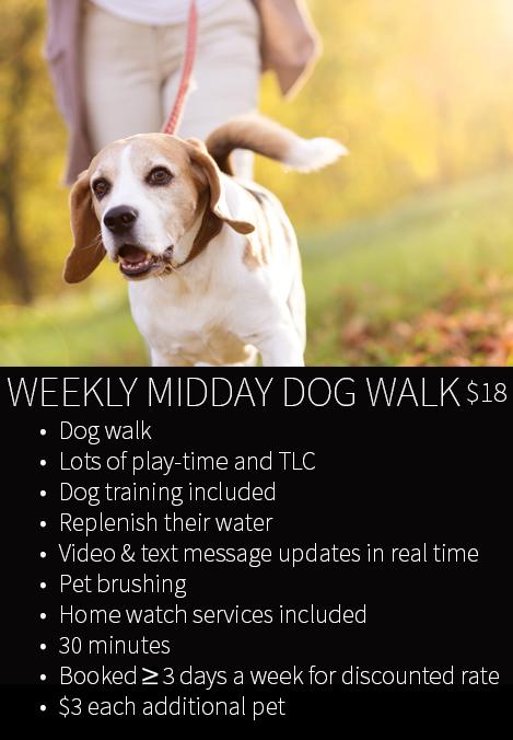 WEEKLY MIDDAY DOG WALKING PRICE WIDGET.jpg
