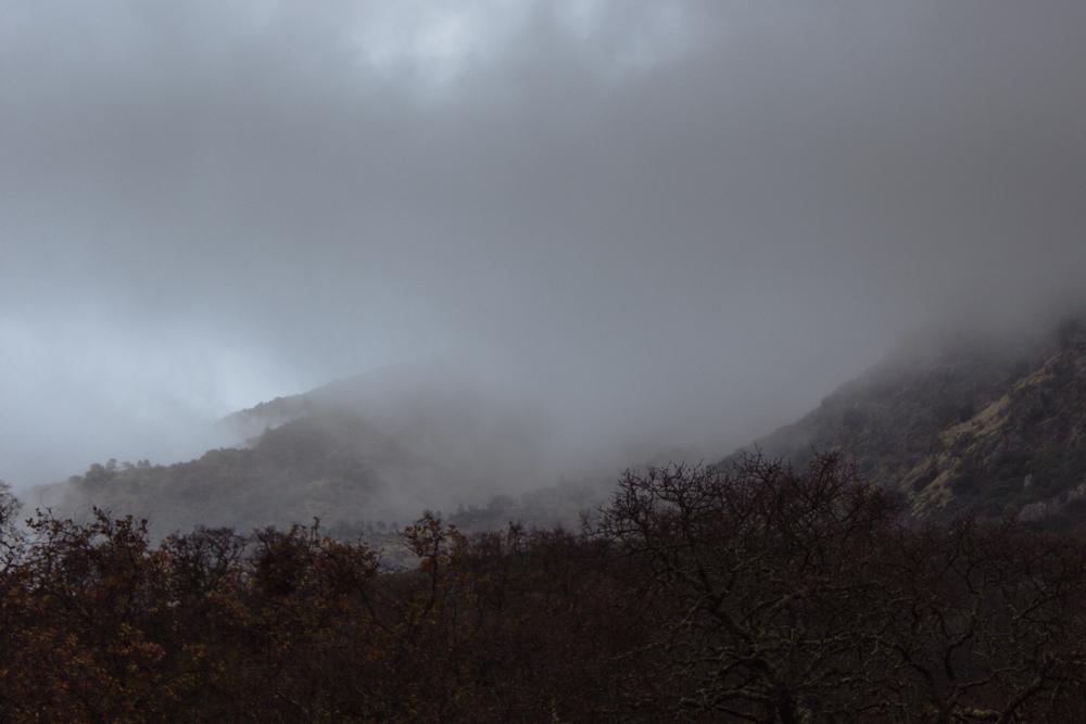 foggyday-10.jpg