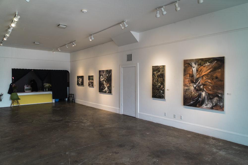 Luis Mameri - Cecilia Lo_s Exhibition-5.jpg