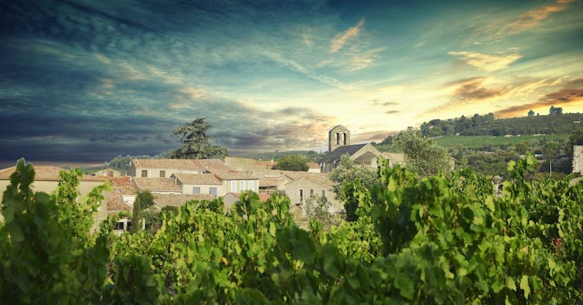 photo1_light.jpg