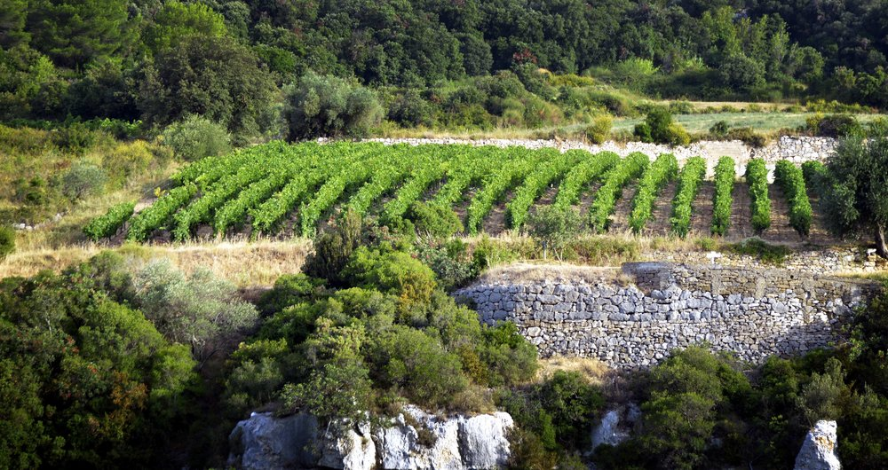 photo3_light.jpg