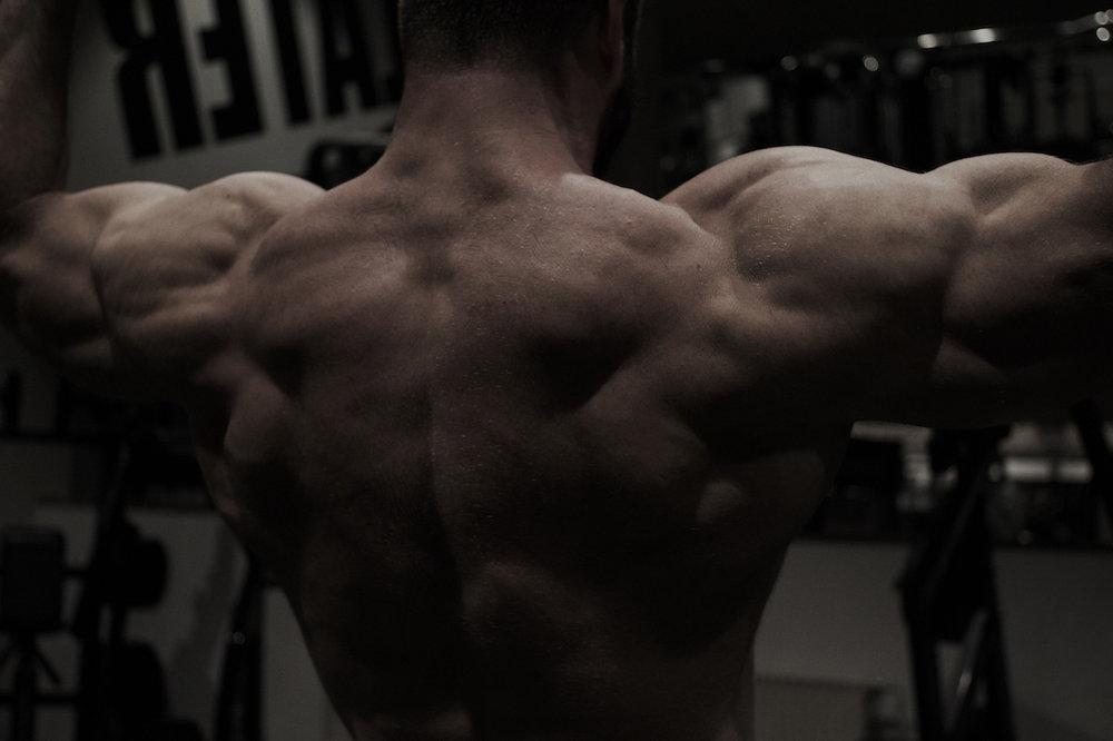 small_3_idasuhr_bodybuilder_web.jpg