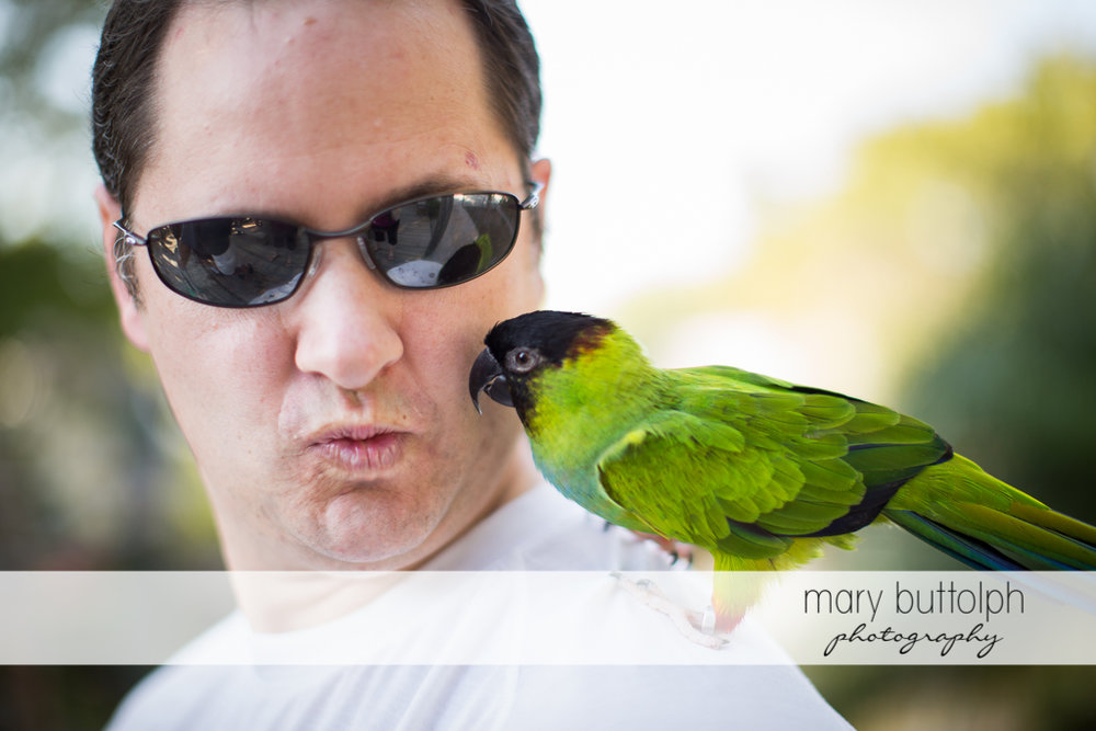 Man finds a new friend in the garden at Sanibel Island Vacation