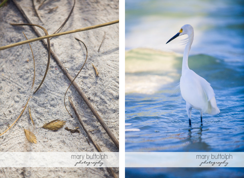 Feathers and sticks lie on the sand while a heron wades in the cools waters at Sanibel Island Vacation